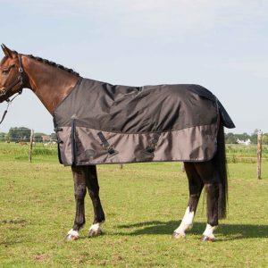 harrys horse deken
