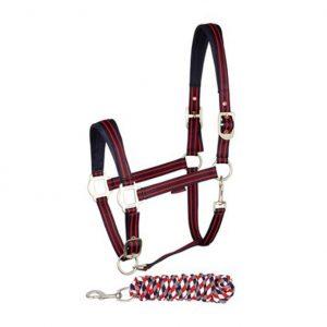 harrys horse halster