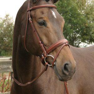 harrys horse hoofdstel bruin