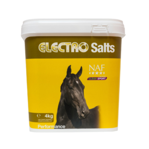 ELECTRO SALTS 10 KG
