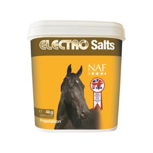 ELECTRO SALTS 4 KG