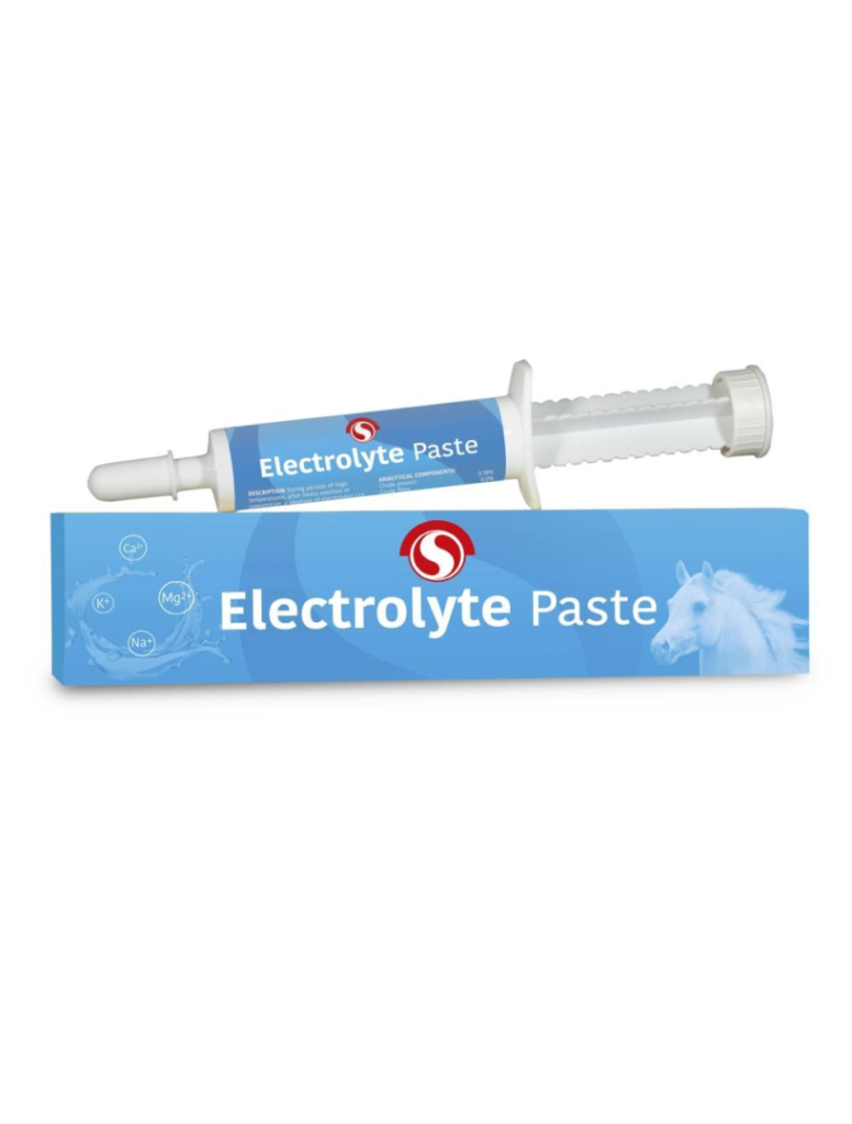 Sectolin electrolyte pasta