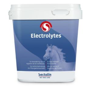 Equivital Electrolyten