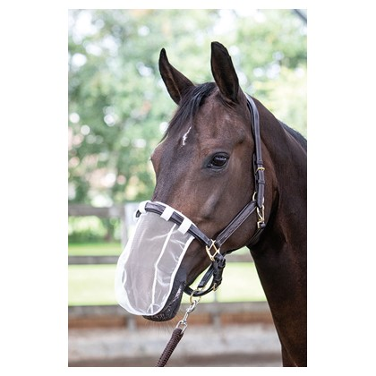 Harry's Horse nosenet