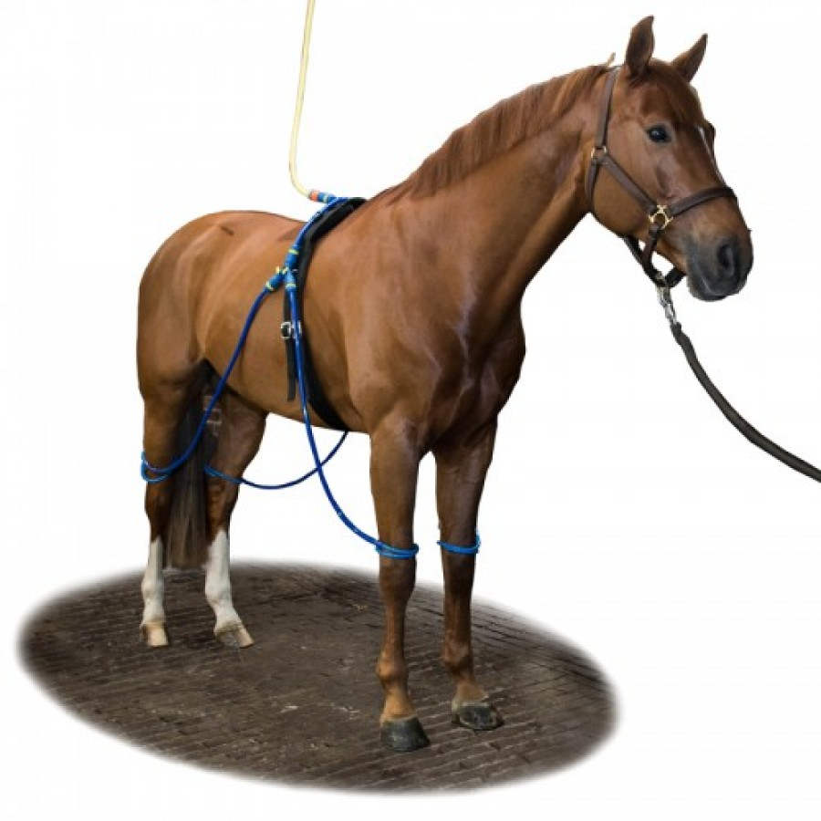Equine legcooler compleet 4 legs