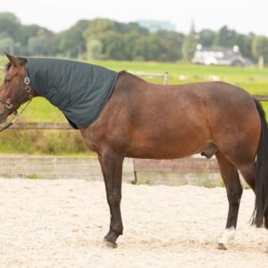 Harry's Horse halsstuk Thor 200 gr.