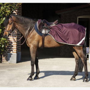 Horseware Ripstop Competition